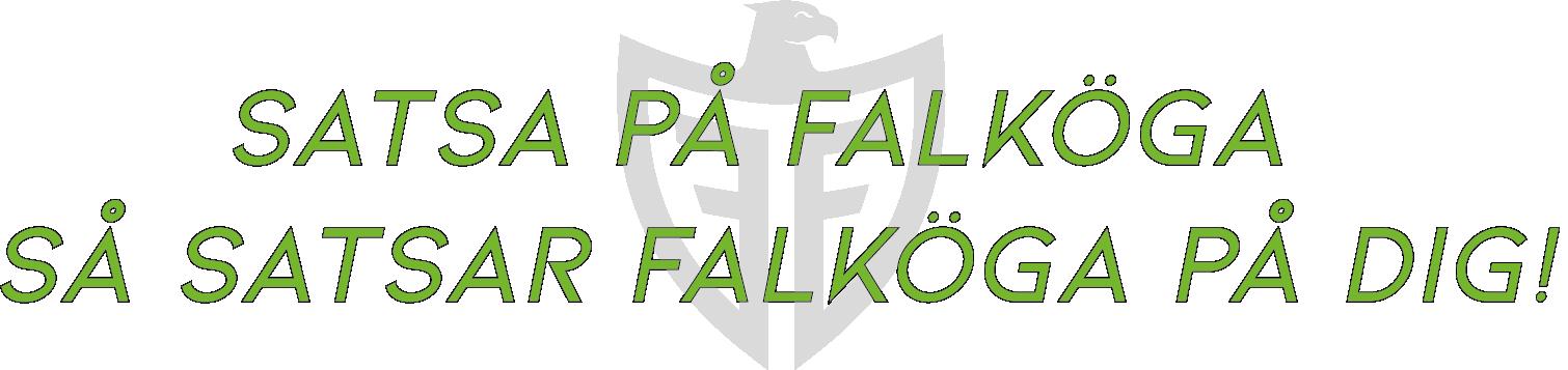Satsa på Falköga så satsar Falköga på dig - Falköga företagsrådgivning, revision- och redovisningsbyrå